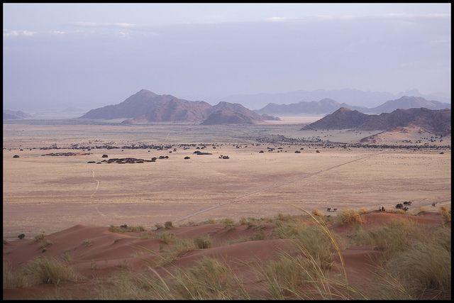 Un paysage en Namibie