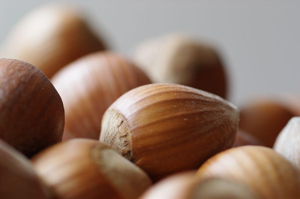 Protéines végétales : pourquoi cette étude qui vous pousse à les consommer est à prendre avec précaution