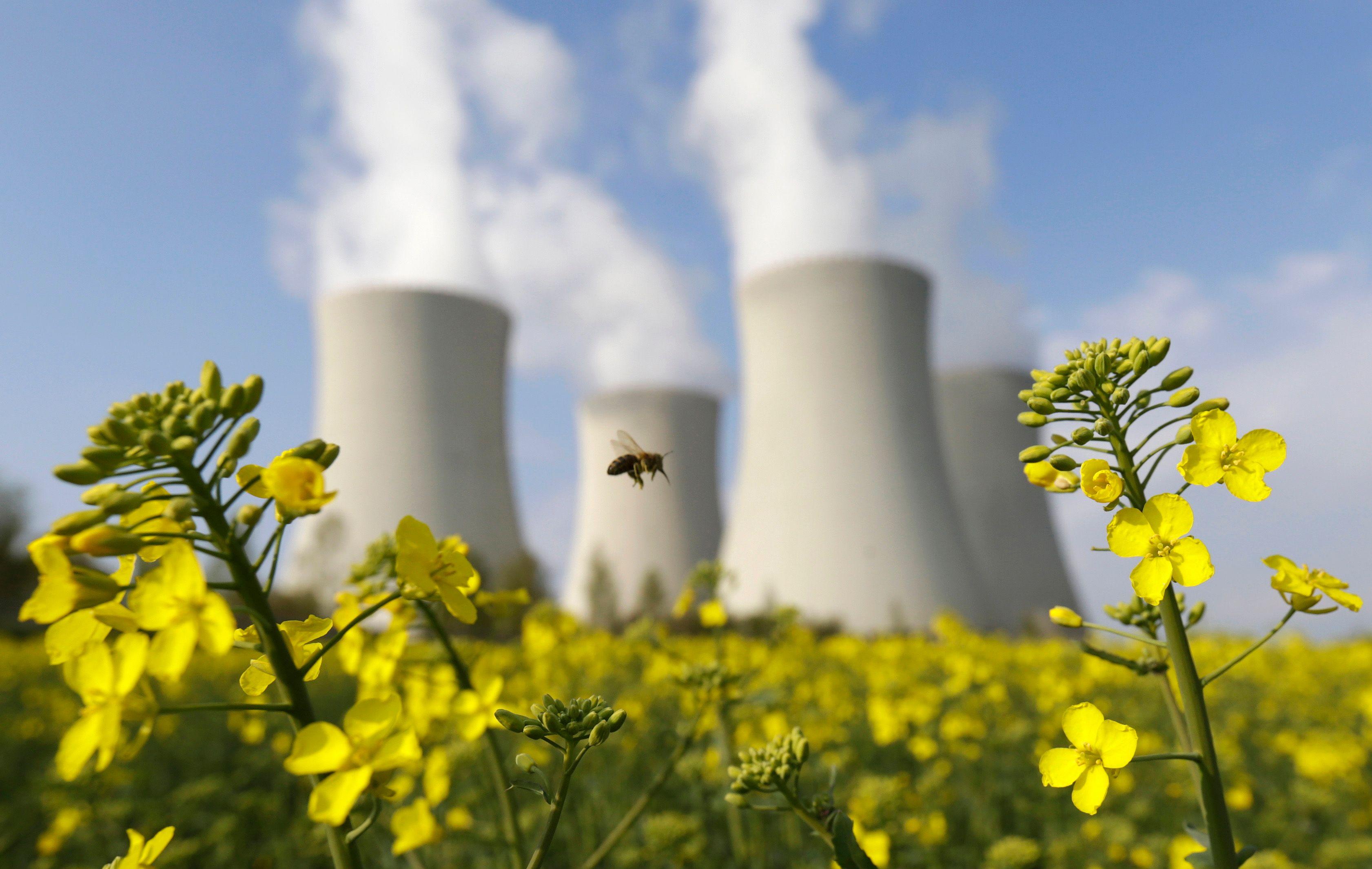 Et si l'écologie devenait un thème traité par tous les partis ?