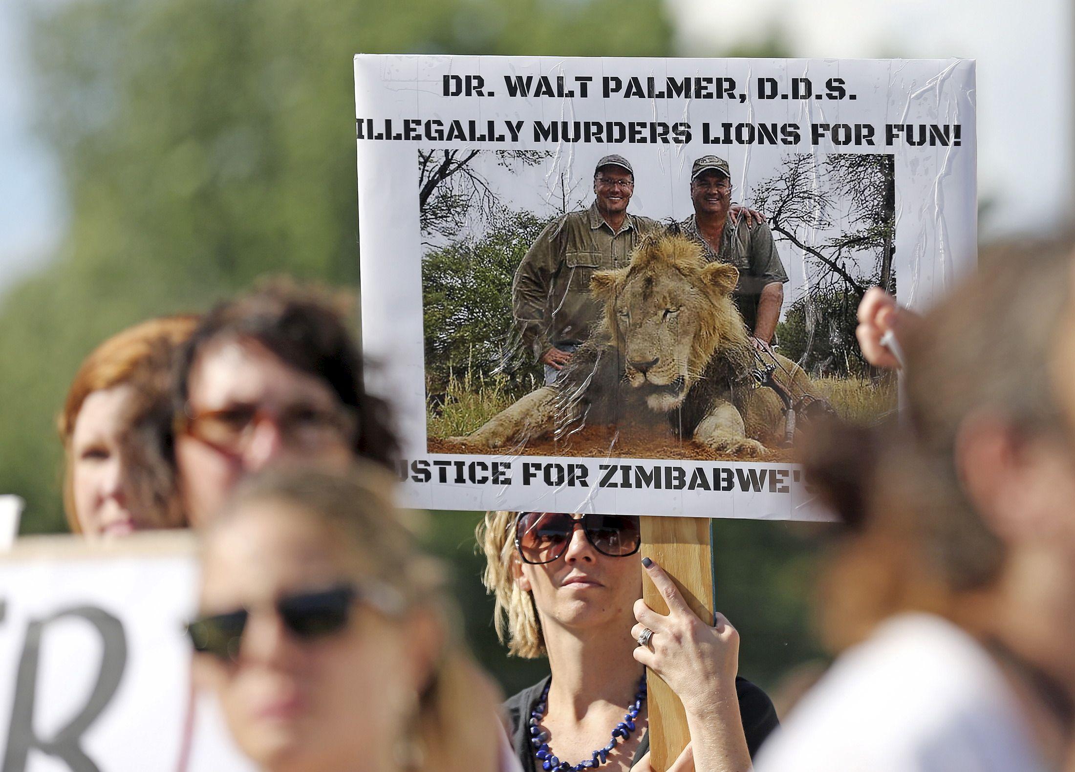 De quoi Cecil (le lion) est-il le nom ? De notre indifférence !