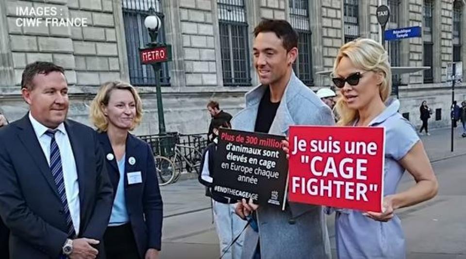 Défense des animaux : Pamela Anderson mise en cage place de la République pour la bonne cause