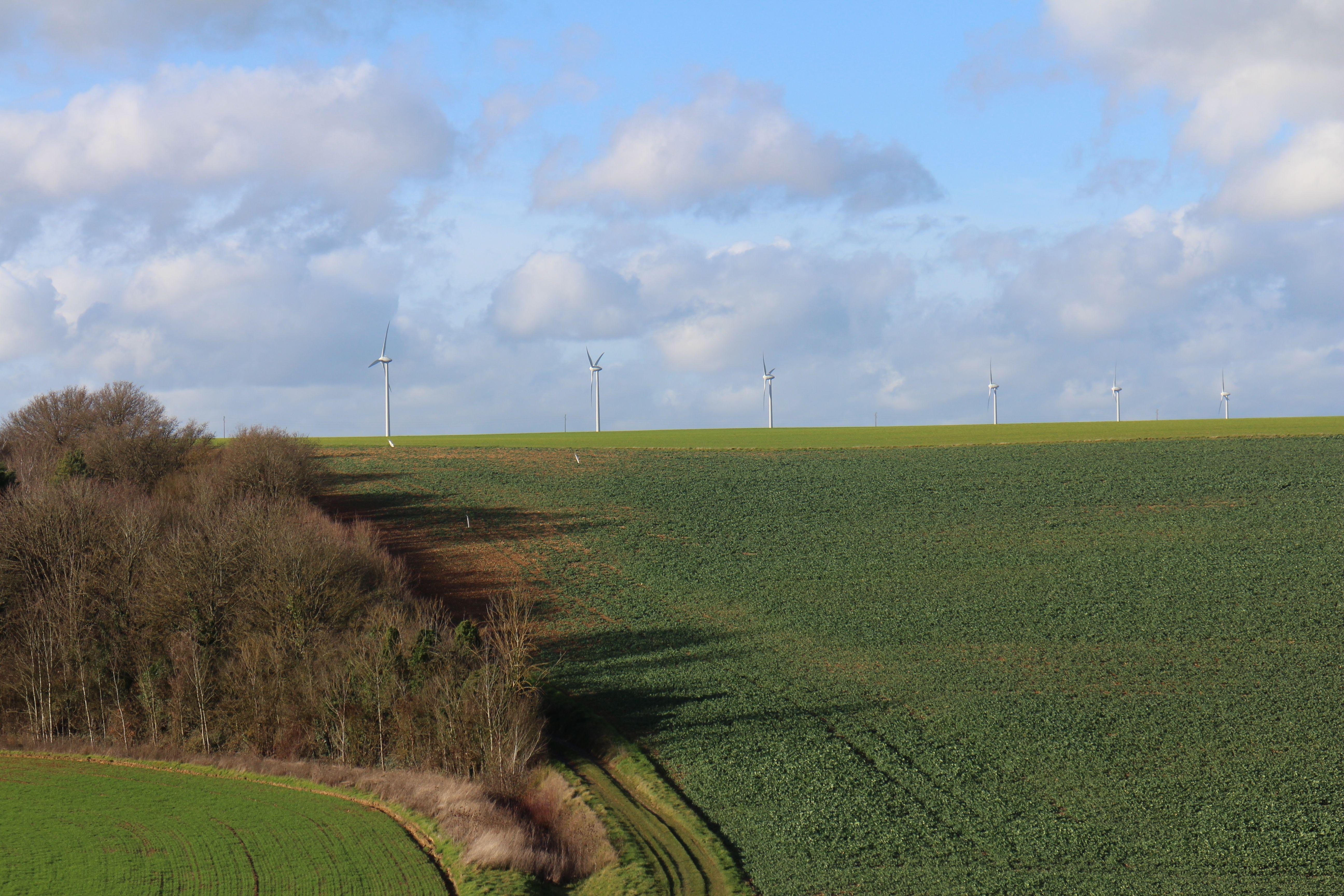 Tensions sur les prix, PAC, normes environnementales... Que peut espérer le monde agricole en 2018 en France ?