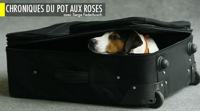 Hollande et Valls ont un plan de départ.