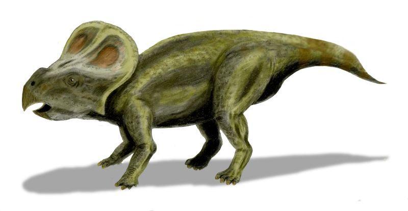 Les dinosaures les mieux équipés sont les plus séduisants