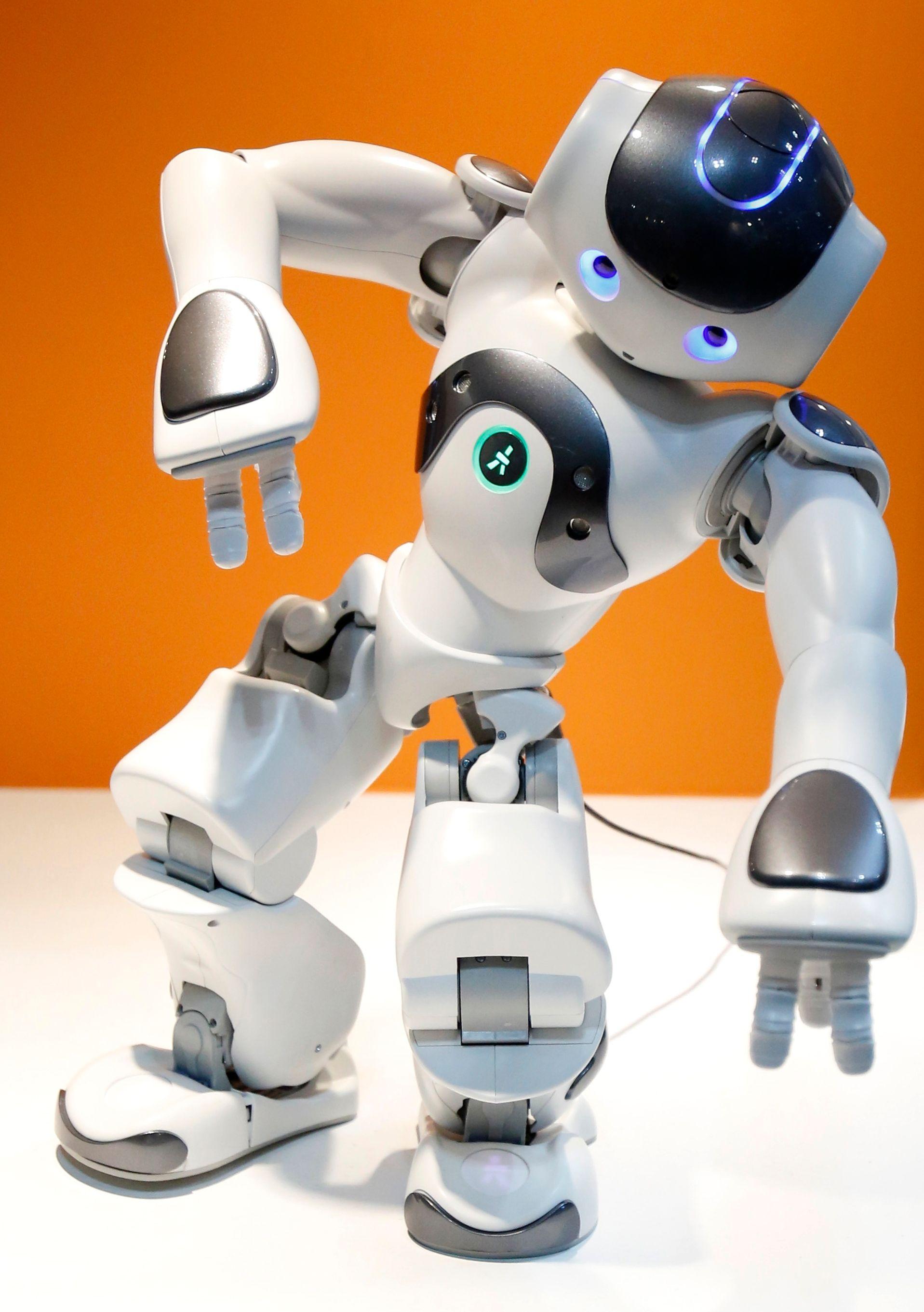 Les études s'accumulent d'auteurs pessimistes qui démontrent que les robots pourraient détruire les emplois humains.