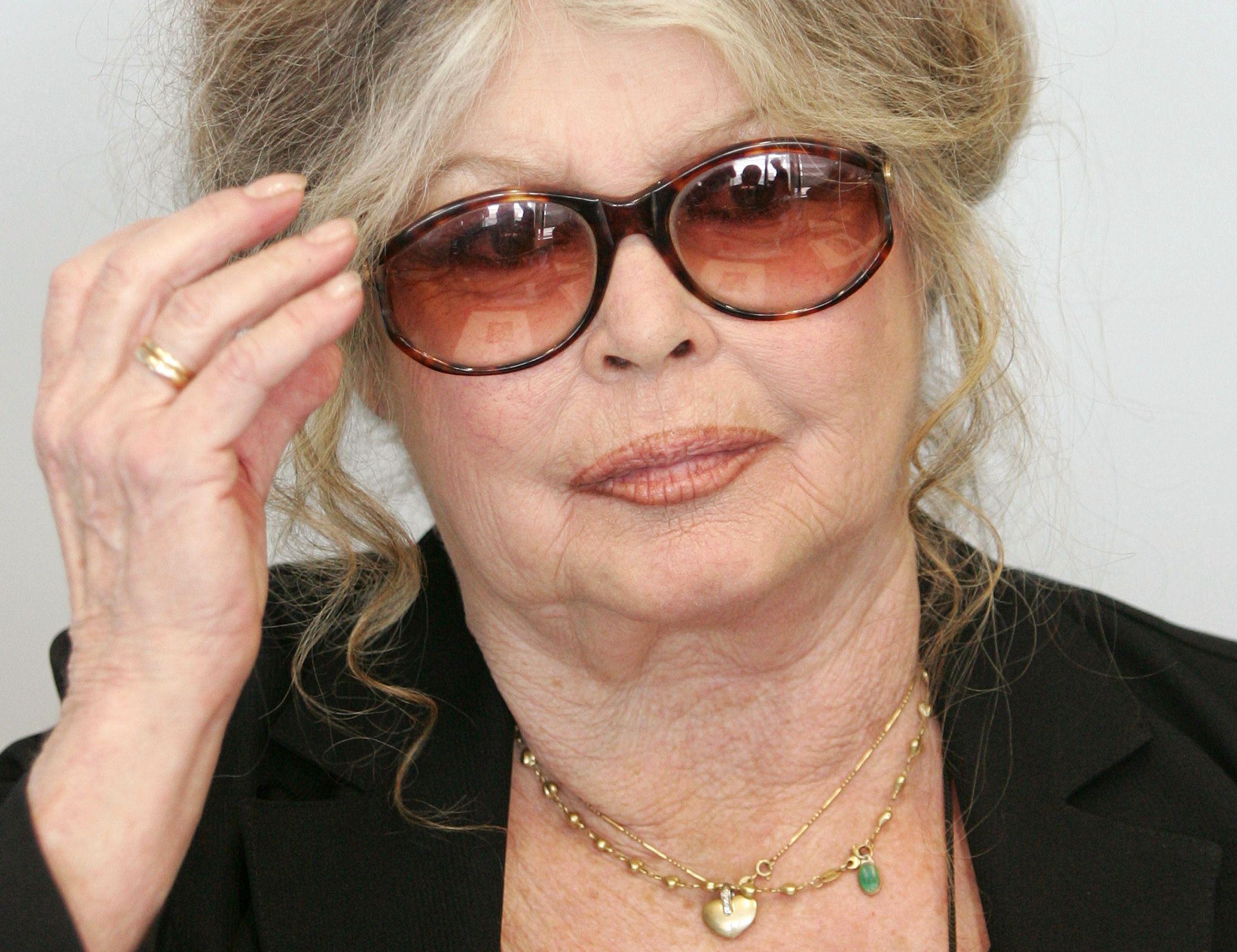 """Selon Brigitte Bardot, le cinéma français ne compte plus que des """"barbus et des actrices aux cheveux gras"""""""