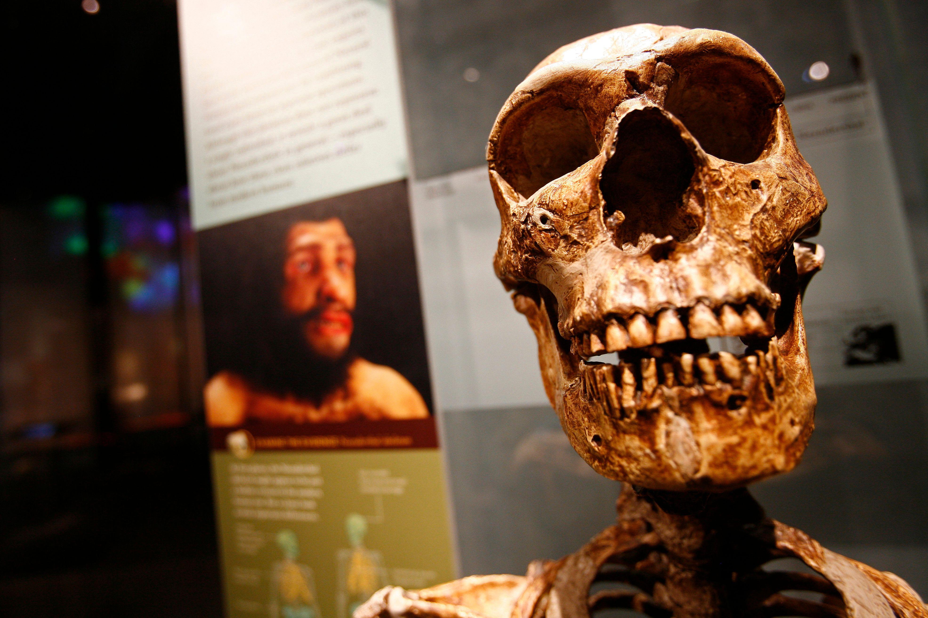 Maroc : une découverte capitale repousse de 100 000 ans l'âge des premiers Homo sapiens