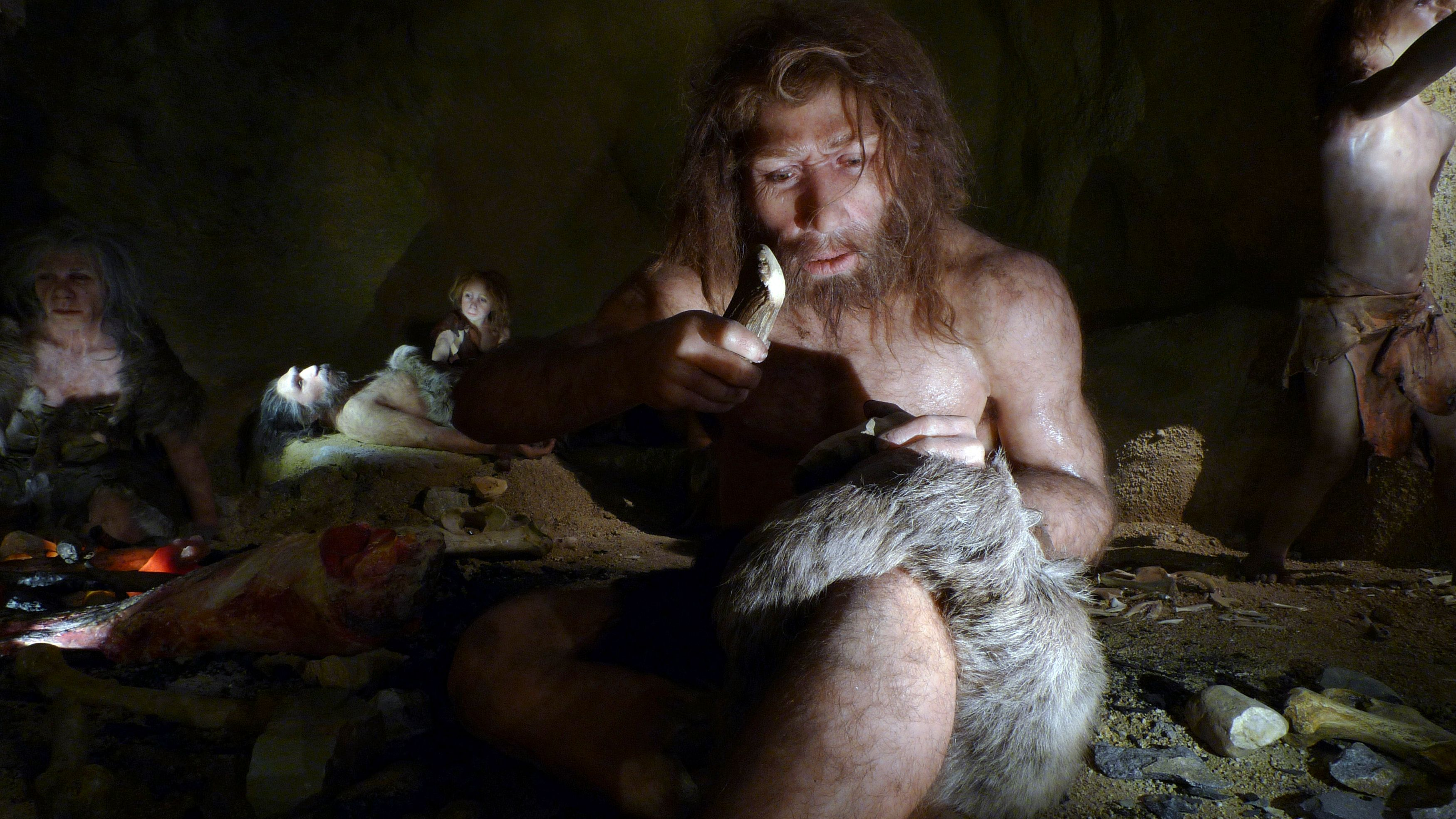 Néandertal, notre vieil ami, nous réserve aujourd'hui encore bien des surprises.