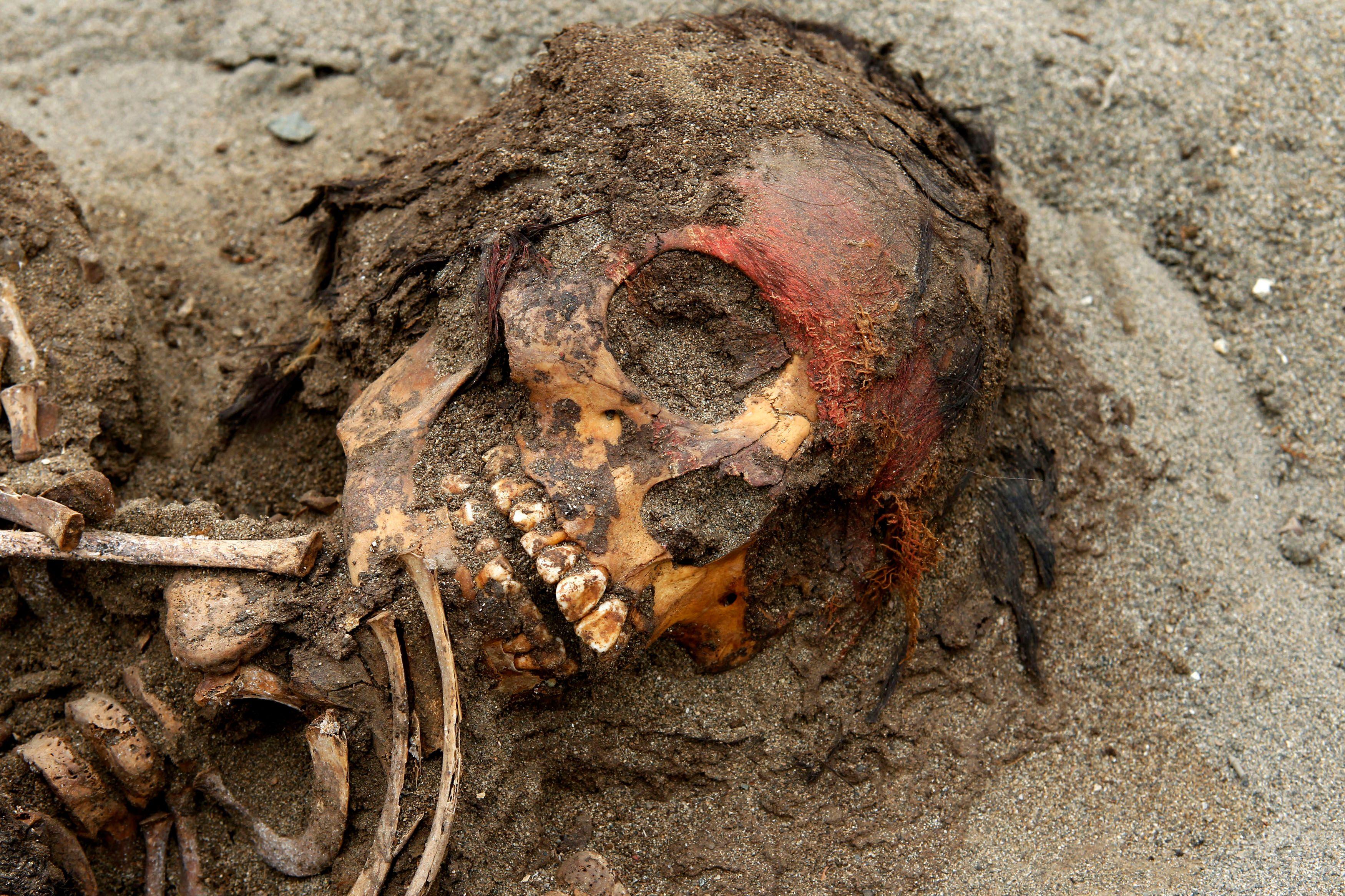 Le squelette d'un adolescent incas d'environ 14 ans sacrifié par son peuple.