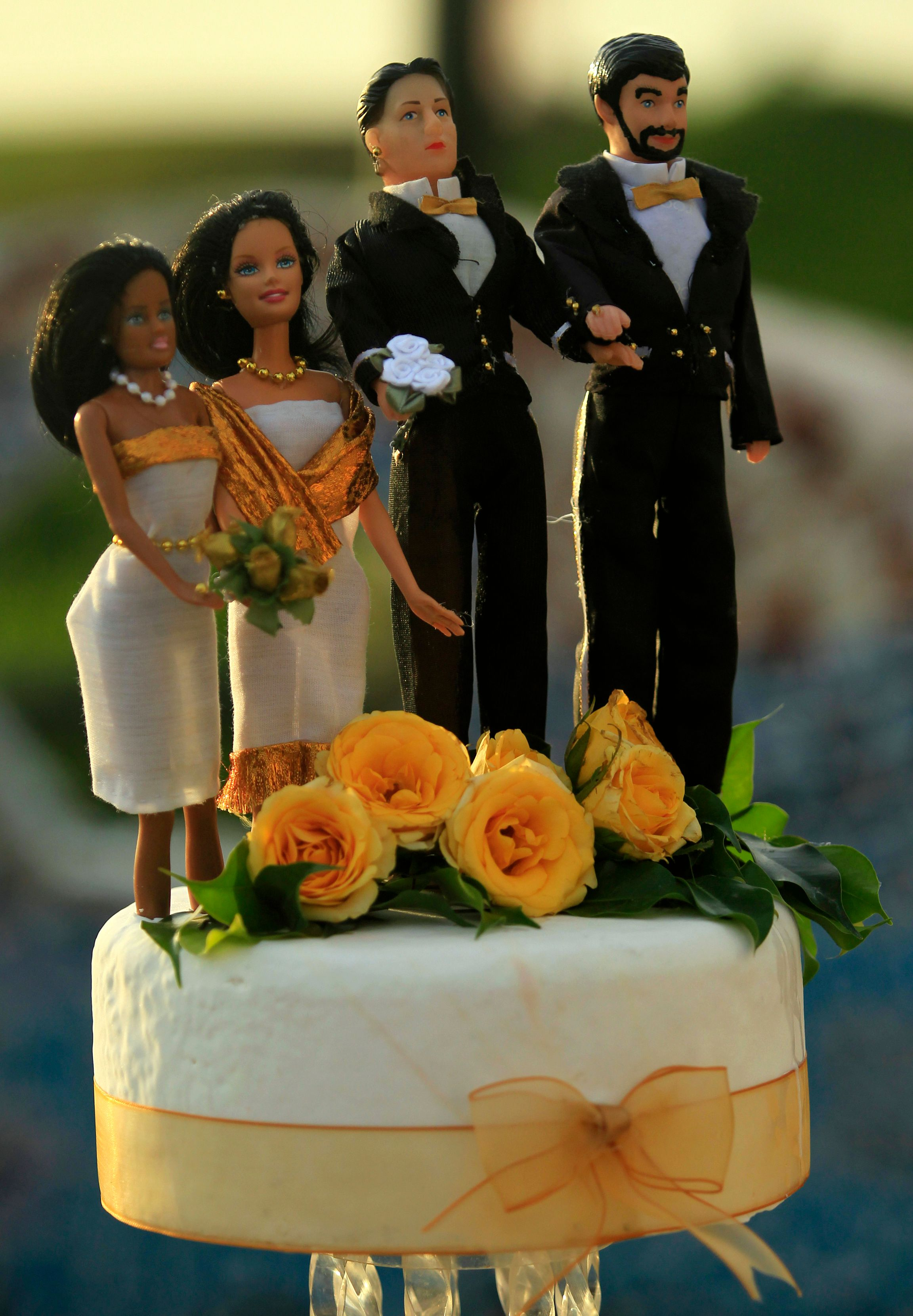 Mariage homosexuel : François Hollande reçoit Frigide Barjot et les opposants au projet