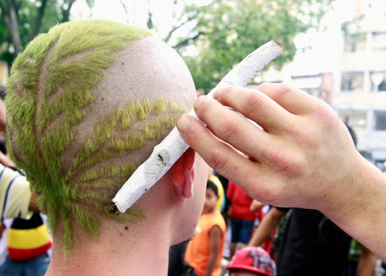 """Un rapport publié vendredi 19 décembre par le think tank Terra Nova préconise de """"réguler le marché du cannabis pour sortir de l'impasse""""."""