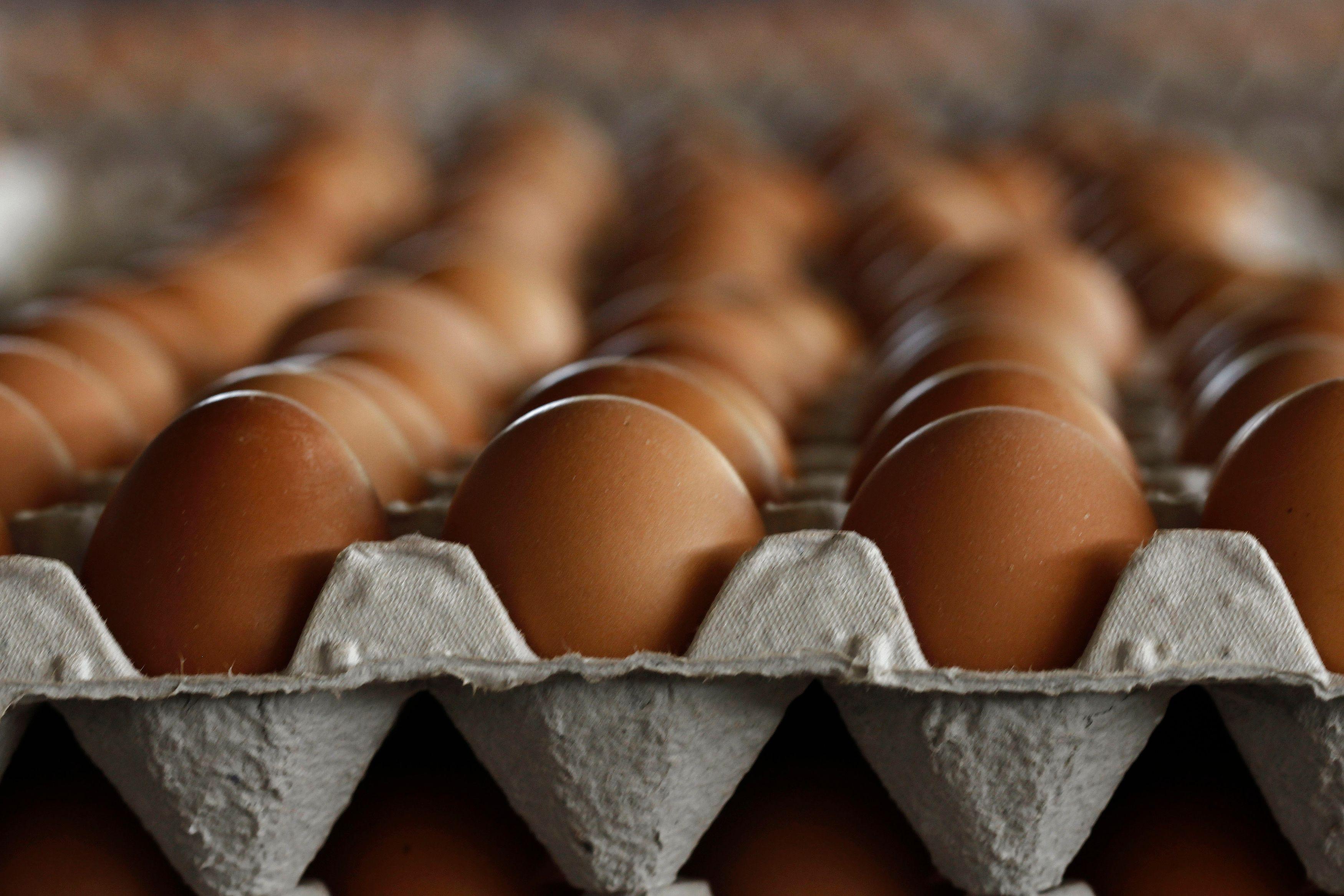 Comment conserver ses œufs ?