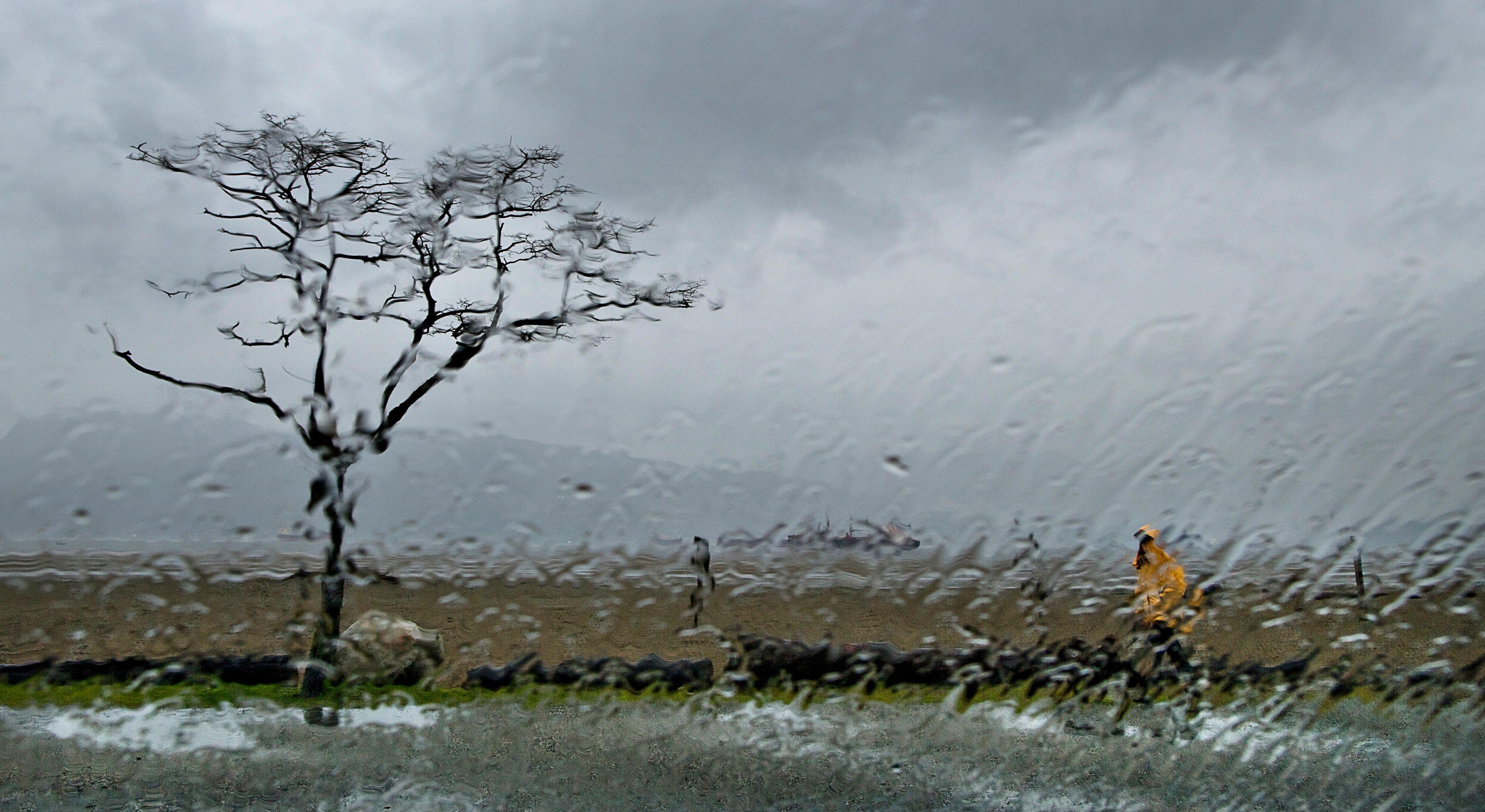 Des pluies fortes se sont abattues mardi soir sur le sud-est