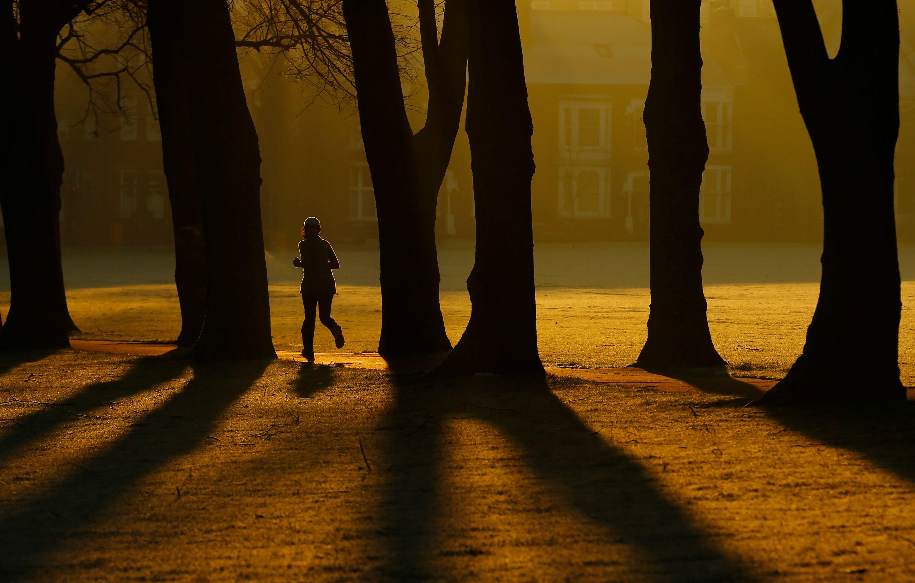 En ajoutant un arbre par km², il y a 1,38 fois moins de consommation de médicaments.