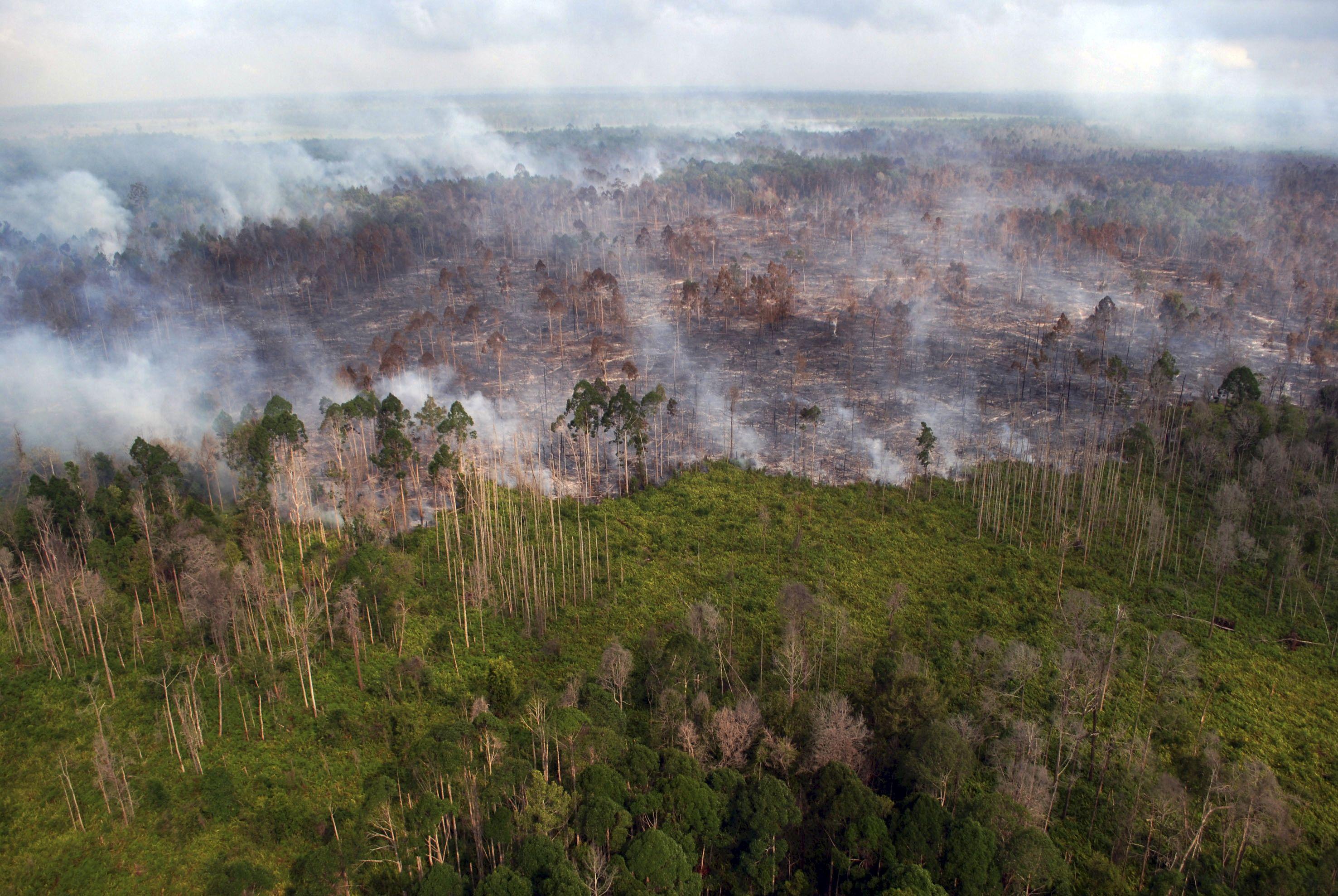 Étude : la pollution aurait tué 100 000 personnes en Indonésie en un an