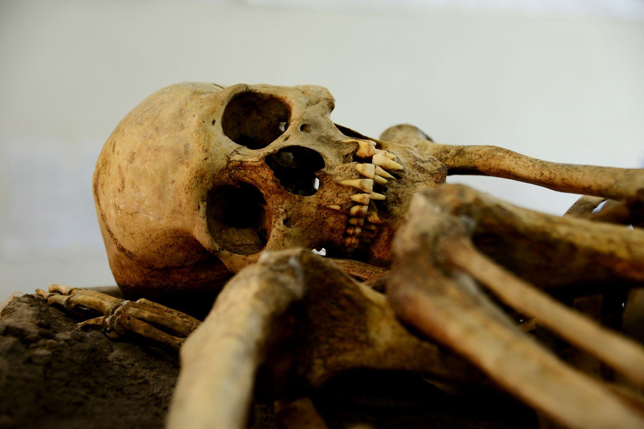 Les hommes préhistoriques avaient mauvaise haleine