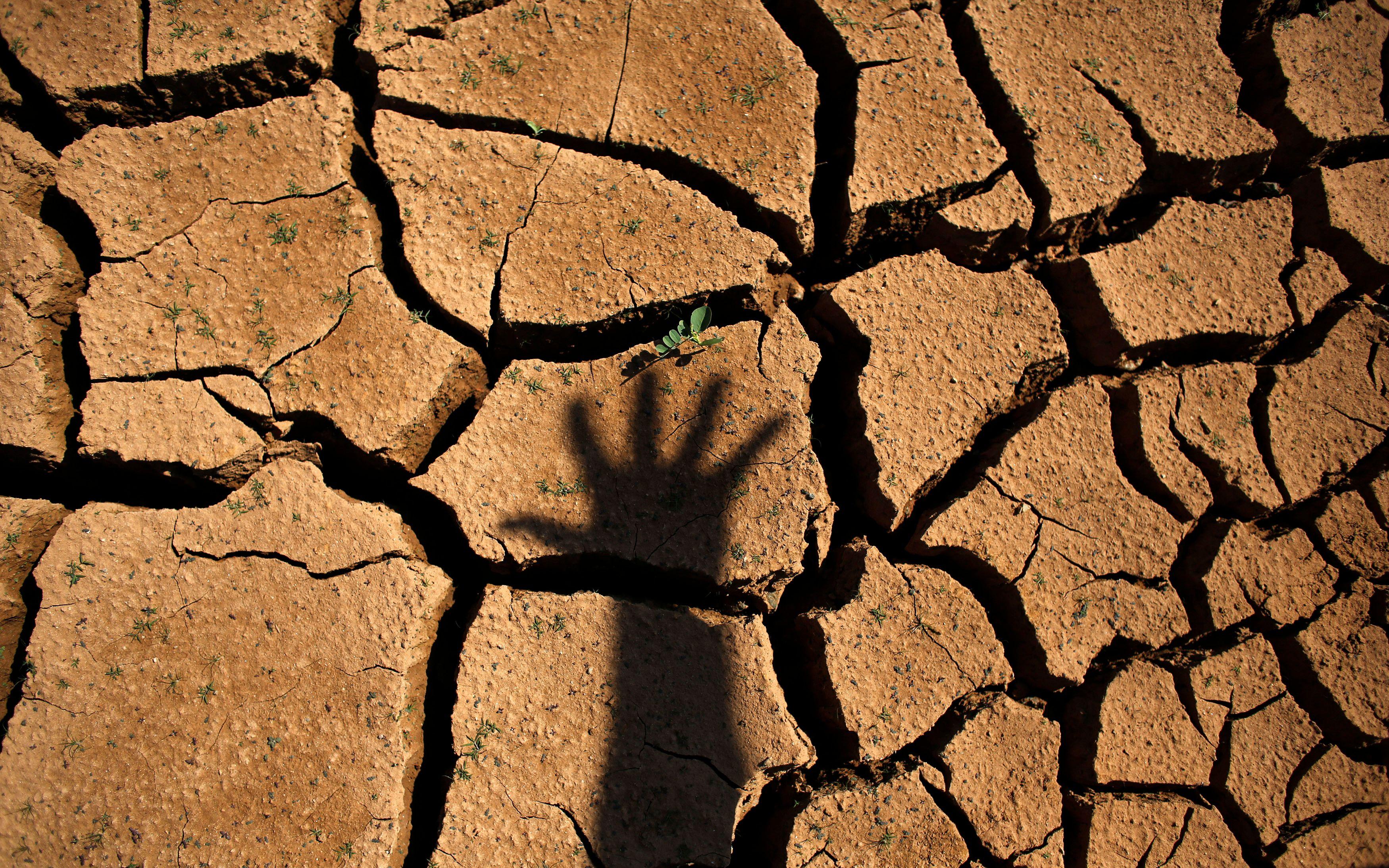 La sécheresse enregistrée lors de l'été 2015 est la plus forte depuis la terrible canicule de 2003.