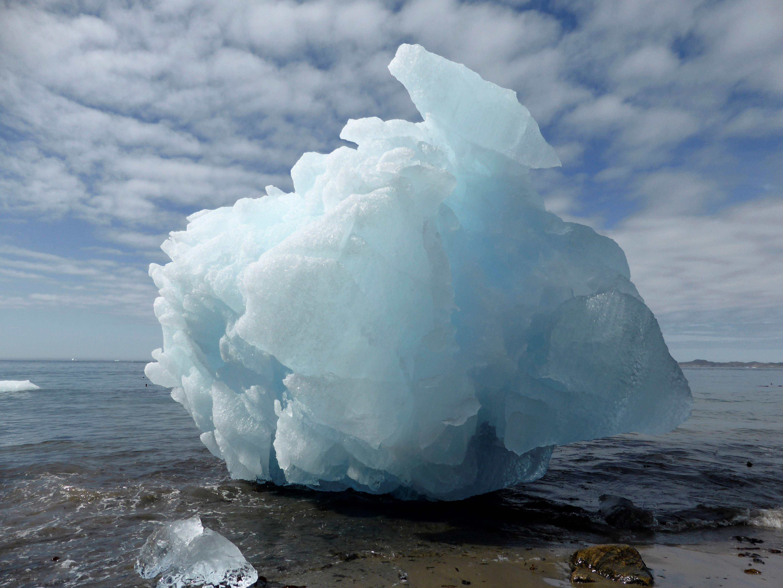 Des fossiles trouvés au Groenland font remonter les estimations de l'apparition de la vie sur Terre