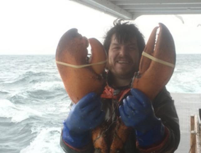 Un homard de près de 8 kilos pêché au large de la Nouvelle-Écosse