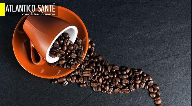 Peu importe la qualité du café, deux tasses et demie consommées chaque jour divisent par deux le risque de cancer colorectal.