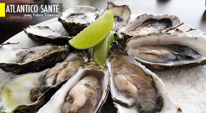 Les huîtres transmettent les norovirus humains, responsables d'épidémies de gastro-entérite.
