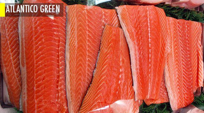 2048, la fin des sushis sauf à ce que nous changions radicalement nos modes de pêche