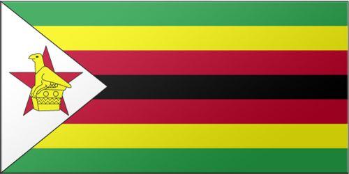 Le Zimbabwe n'aurait plus que 217$ dans ses caisses