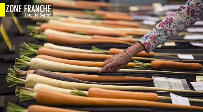 Plantes «intelligentes» et végétarisme : mourir de faim est-il la dernière frontière éthique?